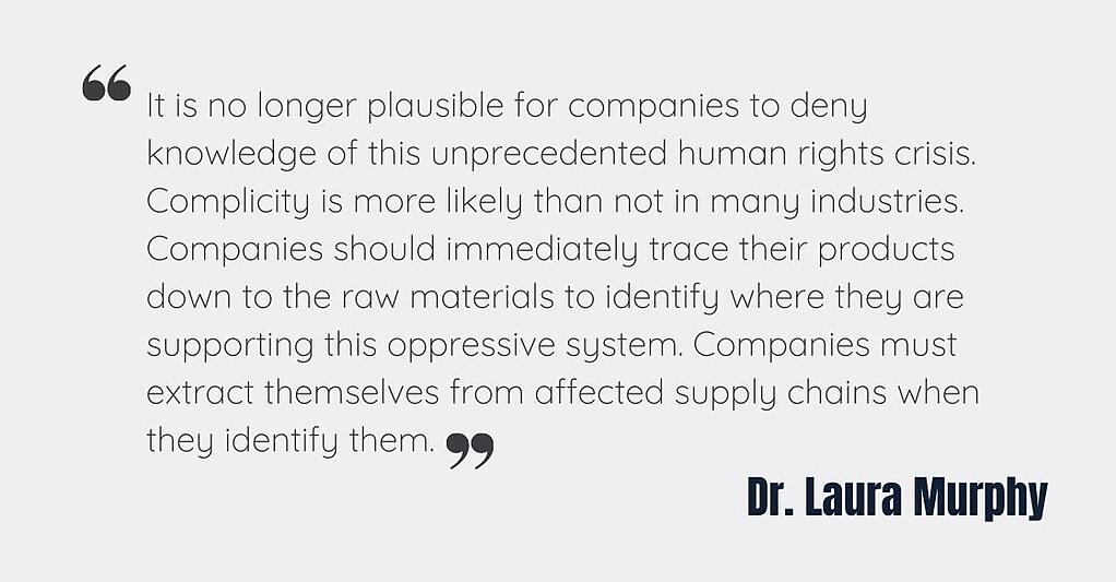 Dr. Laura Murphy on Forced Labor