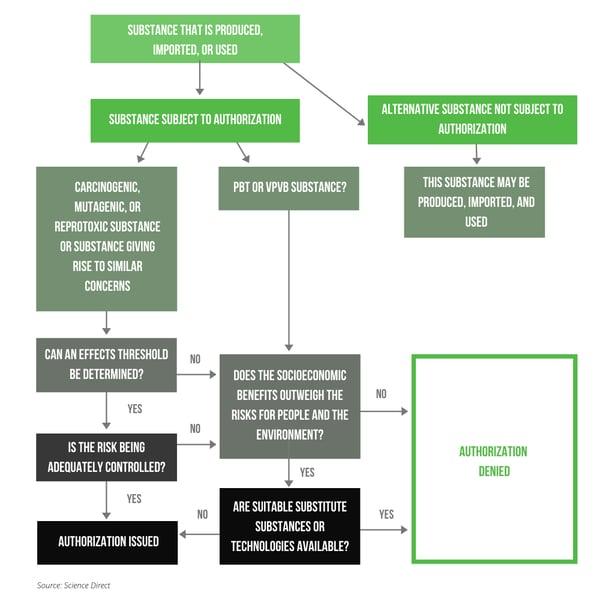 REACH case by case model