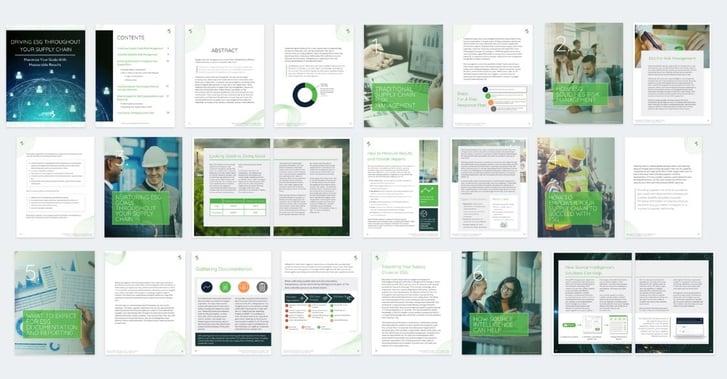 Supply Chain ESG White Paper Spread